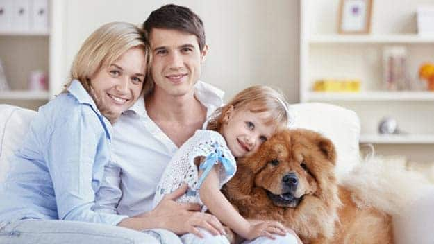 Wills & Trusts dog-young-family Direct Wills Pudsey